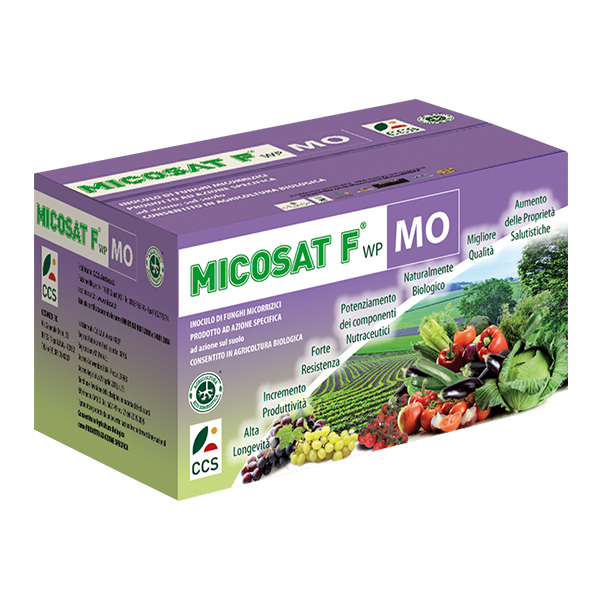Micosat F MO